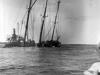 Skibsaksjeselskapet Hesviks historiske fotoarkiv 6